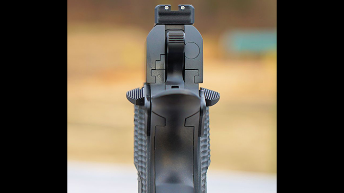 carolina arms group Privateer Carry Commander pistol sight
