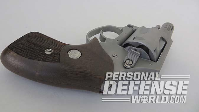 charter arms boomer revolver rear angle