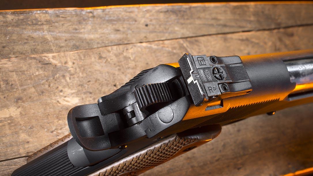 Iver Johnson Eagle XL pistol rear sight