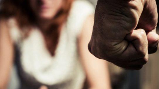 new york gun control bill domestic violence fist