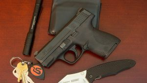 Must-Have Guns Smith & Wesson M&P Shield 9mm Pistol