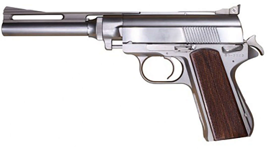 Wildey Survivor pistol pistol left profile