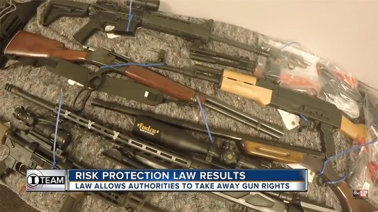 florida red flag law guns confiscated