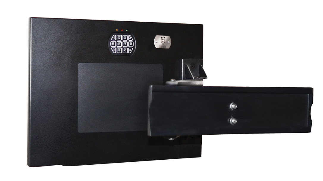 gun storage devices, Cannon TV Mount Wall Safe