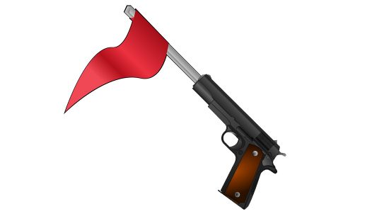 Maryland Gun Laws, Red Flag law