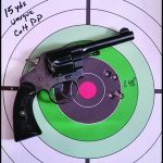 Concealed Carry Guns target