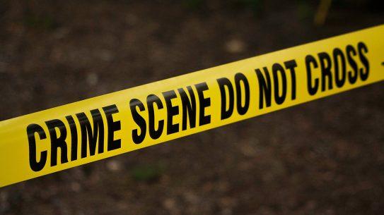 South Carolina Homeowner Shoots at Burglar