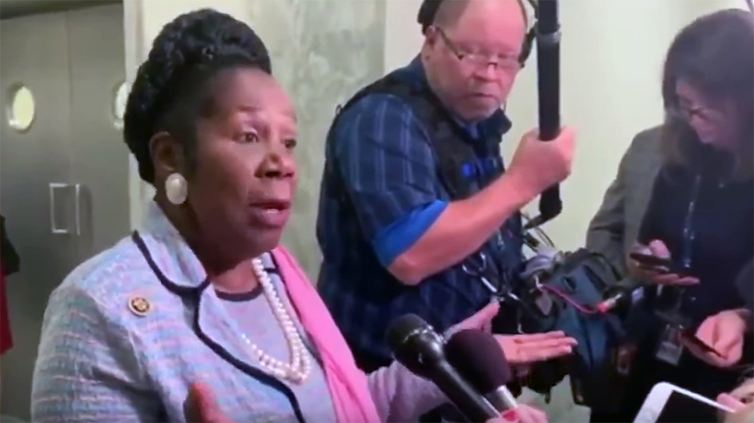 Congresswoman Lee makes ridiculous AR-15 comments.