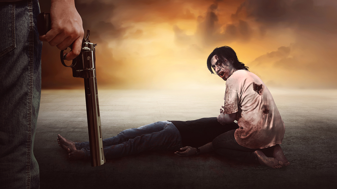 David Chipman, anti-gun, Gun Owners zombies