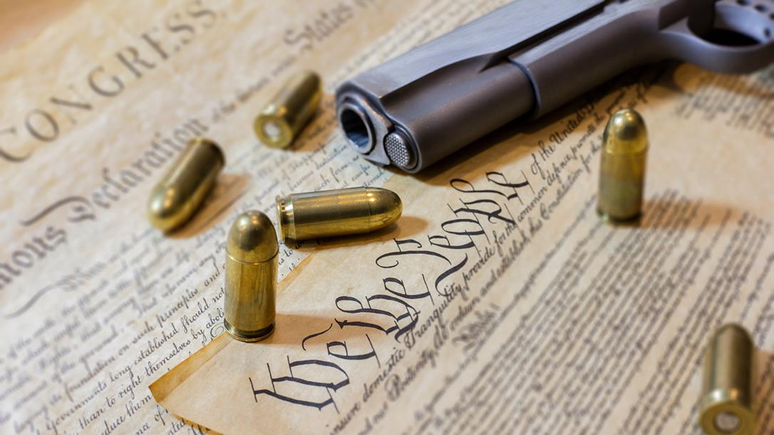 NRA Alternatives, Republicans Gun Control, Second Amendment, Congress, guns