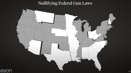 More than a dozens states are attempting to nullify federal gun control laws from Biden administration.